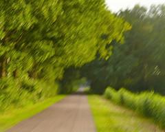 Niet veroorzaakt door een computer crash..... (andzwe) Tags: road copyright motion blur netherlands dutch bomen path © nederland haag drente drenthe weg bewogen doorkijkje panasonicfz panasoniclumixdmcfz50 andzwe ©andzwe harvattingfietsenmetbuurman resumptionbikingwithneighbor