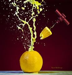 Orange Spritzer (Pragmatic1111) Tags: orange nikon florida juice cork flash spray orangejuice geyser splash corkscrew oj spritzer d700 sb700 mygearandme mygearandmepremium sb910 flickrsfinestimages1 flickrsfinestimages2