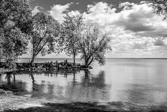 Quiet Cove: Bronte Harbour (KWPashuk) Tags: trees bw ontario reflection water monochrome clouds nikon rocks harbour ripples d200 oakville bronte