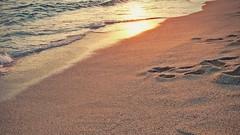 """The world is shaped by two things, stories told and the memories they leave behind."" (stjernesol) Tags: light sunset sun beach beautiful seaside glorious seaview ilovethisbeach in2daysiamstandingtherearoundsunsetforsureiam hereisallgreyandwetandcold autumnhasfounditsway iamnotlikingit gladiamleavingforthesun"