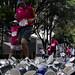 XXXI Maratón de la Cd. de México