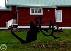 konst1 (Johan Ylitalo) Tags: art reindeer konst ren kiruna 2013