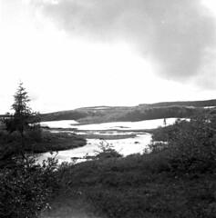 Fjellandskap (ca. 1950)