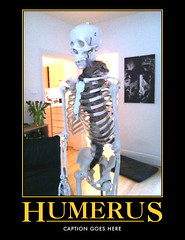 automotivator (5) (lys.dexic) Tags: skeleton mine demotivator punny captioned humerus