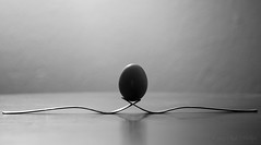 Egg (Rob J Phillips) Tags: bw photography sensual study form