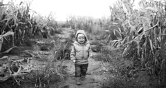 Salty Maize (mravcolev) Tags: portrait blackandwhite bw field kids canon corn cornfield cry maize weep 35l canonef35mmf14lusm canoneos5dmarkii