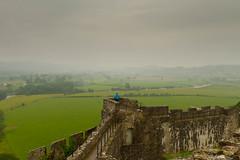 All that she surveys (mclcbooks) Tags: blue mist green castles rain wales landscape ruins castell cadw dinefwr
