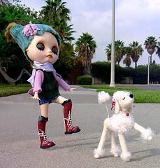 Walk this way (DollyBeMine) Tags: california dog pet white cute girl felted walking toy outside outdoors funny doll felting walk snooty sidewalk palmtrees needle poodle sasha blythe custom olydoll melaniesmenagerie