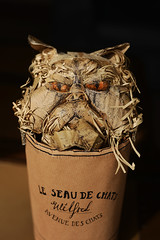 """Wilfred"" by Charlotte Duffy (Mark Liddell) Tags: sculpture pet cute art face animal statue cat french design amber persian bucket eyes flat craft whiskers cardboard grumpy productions wilfred smooshed wasteofpaint charlotteduffy"