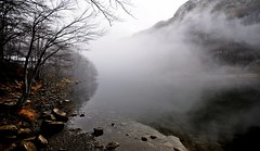 emblema della doppia entit (Claudia Gaiotto) Tags: trees lake mountains fog forest reflections lago mood silence brumes nebla