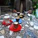 80_2009_01_Ethiopia_279