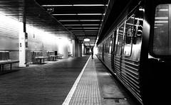 last man standing (Bec :-)) Tags: bw man standing train canon trainstation adelaide tamron southaustralia choochoo shhhhhhhhh 2875mm lastmanstanding standinginthelight getonboard 450d 229pm rbat75 vision:outdoor=0551 incognitioshooting therbattrain