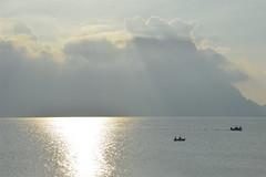 Nel mare, l'argento (costagar51) Tags: italy italia mare sicily tramonti palermo sicilia isoladellefemmine bellitalia flickrsicilia rgspaesaggio regionalgeographicsicilia rgsmare rgsnatura panoramafotogrfico
