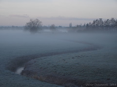 Melancholie (Oliver Deisenroth) Tags: nature fog sunrise nebel natur foggy sonnenaufgang olympusstylus1