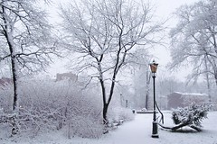 park dressed in white :) (green_lover (your COMMENTS are welcome!)) Tags: park winter snow żyrardów poland lamp trees town hometown white day