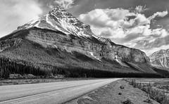Road Trip - B&W (Jeff Clow) Tags: road mountains nature landscape roadtrip parkway albertacanada banffnationalpark icefieldsparkway ©jeffrclow banffphototour jeffclowphototours