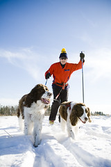 Cross Country Skiing - Hampshire County (Massachusetts Office of Travel & Tourism) Tags: winter dog snow outdoors skiing massachusetts crosscountry recreation hampshirecounty
