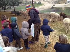 orvalle-infantil-granja (3)