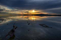 Sunset from Spit (Rene52) Tags: sky cloud tree wetlands wintonwetlands