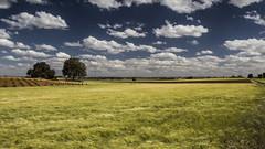 21/52 clouds (ponzoñosa) Tags: clouds viento nubes campos sequia castillalamancha