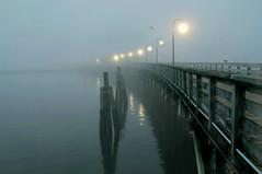 Misty Pier (floralgal) Tags: ocean seascape water misty fog landscape pier dusk pilings longislandsound ryenewyork westchestercountynewyork playlandparkpier duskonthepier