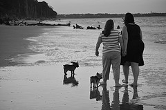 A stroll on the beach (DancingTerrapin) Tags: ocean summer people blackandwhite white black beach dogs water digital ga georgia walking photography photo high sand women tide photograph smalldogs jekyllisland atlanticocean tides jekyll fiance digitalphotograph petowners jekyllislandga jekyllislandgeorgia