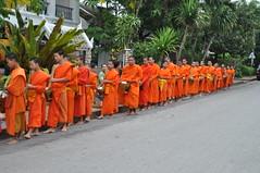 Quite a line up of monks there! (oldandsolo) Tags: southeastasia earlymorning buddhism tourists lp laos luangprabang buddhistmonk laopdr makingmerit unescoworldheritagecity buddhistreligion takbat buddhistfaith morningalmsgivingritualluangprabang morningalmsgivinginluangprabang