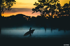 It's cold. (alexfringsphoto) Tags: morning mist fog sunrise early search surf lifestyle australia surfing mctavish wispy eastcoast alexfringsphoto