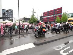 MAH04224 (TresKasen) Tags: netherlands sony eindhoven parade roze 2014 a99 sal1635z