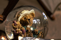 hdr_bear in a bubble (tsmpaul) Tags: canon eos600d rebelt3i kissx5 hdr
