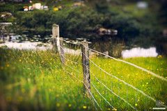 From Fence to Pond (w.mekwi photography [here & there]) Tags: pond westernisles scotland 50mmf14 dof loch hff fencefriday uk bokeh wmekwiphotography grosebay isleofharris nikond800