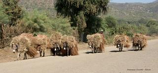 Etiopia. Verso il villaggio......