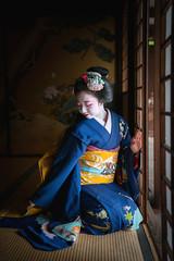 Maiko20161016_13_02 (kyoto flower) Tags: eiunin temple toshimomo kyoto maiko 20161016     raisuke