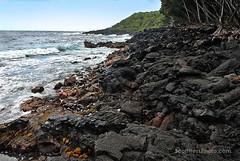 16-Sept_1687x-72 (Scott Hess) Tags: lava beach puna coast hawaii off red road