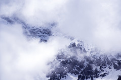 density of clouds (mariola aga) Tags: italy dolomite winter spring mountains slope cliff trees snow clouds thick dense white visibility invisibility nature monochrome