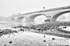 The bridge in the fog (christian.grelard) Tags: bridge fog river rivière pont brouillard