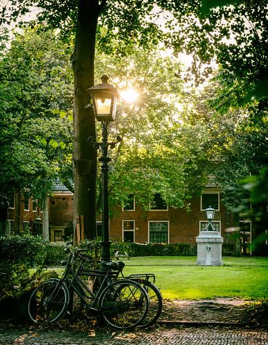 Haarlem courtyard