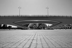 Spagna 6 (pjarc) Tags: spagna spain valencia 2016 foto photo bw nikon città city della scienza calatrava dettaglio detail particolare ponte point architettura architectures