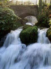 Day of Park and Garden (wheehamx) Tags: greenbank rouken glen