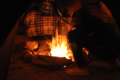 DSC_0357 (David.Sankey) Tags: catskills newyork newyorkstate autumn fall woods forest ny tipi teepee tent camping fire night