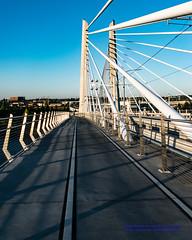 Study of the Tilikum Bridge Pedestrian & Bike Lanes (AvgeekJoe) Tags: bridgeofthepeople d5300 dslr nikon nikond5300 oregon portland tilikumcrossing tilikumcrossingbridgeofthepeople willametteriver bridge cablestayedbridge transitbridge