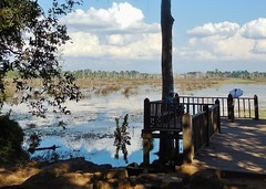 landscape after a flood (SM Tham) Tags: cambodia angkor preahkhan temple waterbasin lake flood water reflections jetty platform deck shadows trees outdoors landscape sky clouds