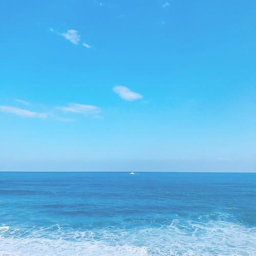 海天不能相戀 觸不到的戀人 一起吹太平洋的風 一起聽浪聲的高歌 一起看鳥兒慢慢飛  用藍色調說著情話 一起分享不能分享的愛情  啊....粉紅的浪漫