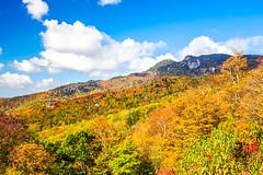 Blue Ridge Fall 2016 05 (Jim Dollar) Tags: jimdollar blueridgeparkway grandtetonnationalpark linvillecoveviaduct mountainviews fall canon6d