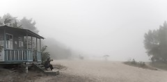 Lost in the misty morning (kud4ipad) Tags: 2016 prokhorovka dnieper river fog mist bank tree outdoors haze landscape platinumheartaward