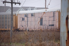 (Chicago City Limits) Tags: freight train graffiti benching rail railroad art guilty guiltywholecar wholecar