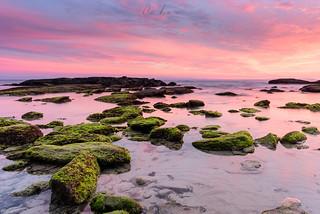 Playa punta Paloma
