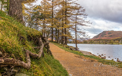 Room is revealed (davenewby123) Tags: buttermere gatesgarth lakedistrict autumn neutraldensityfilter outdoor davenewby water crummockwater oldcottage plant foliage serene landscape mountain tree field hill sky mountainside