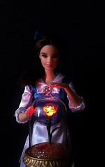 The Enchanted Rose (MaxxieJames) Tags: belle barbie beauty beast disney princess mattel doll dolls collection custom