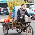 Sugar cane express thumbnail